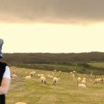 Porrini Group vi augura Buona Pasqua con un simpatico video
